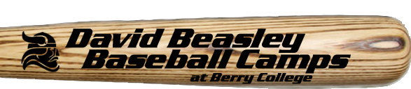 David Beasley Baseball Camps
